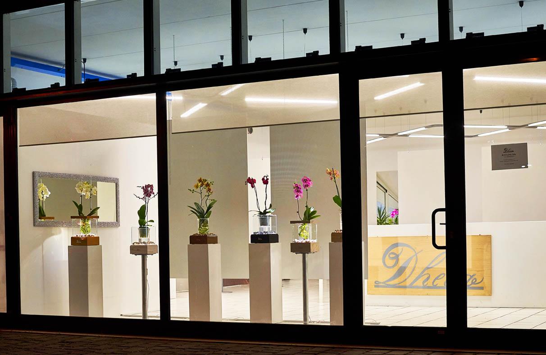 dheea showroom